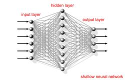 Shallow artificial neural network, scheme. Shallow artificial neural network, schematic structure with layers text labels on white background vector illustration