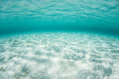 Shallow Caribbean Sea Royalty Free Stock Photography