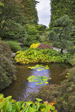 Shallow charming pond. A shallow charming pond in Japanese  garden of the big park Stock Photos