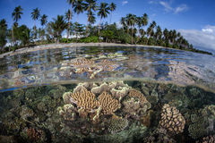 Shallow Coral Reef and Island 2 Royalty Free Stock Photo