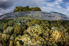Shallow Coral Reef and Remote Island Royalty Free Stock Photos