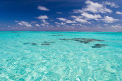 Shallow coral reef in turquoise transparent water, Cook Islands Royalty Free Stock Photos