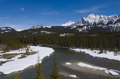 Shallow Crystal Blue Mountain River in Banff Royalty Free Stock Image