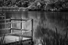 Shallow depth of field landscape image of vibrant peaceful Summe. Shallow depth of field landscape image of peaceful Summer lake in English countryside in black Stock Image
