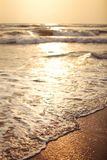 Shallow depth of field photo, abstract peace / relax concept. Se. A waves wash wet sand on the beach during golden sunset light Royalty Free Stock Image