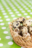 Shallow depth of field quail eggs in the basket Royalty Free Stock Photos