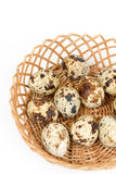 Shallow depth of field quail eggs in the basket Stock Image