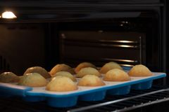 Shallow depth of field. Tasty cupcakes in blue molds are baked in an oven. royalty free stock photo