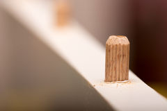 Shallow depth of field and wooden dowel in the wood Stock Images