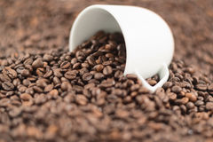 Shallow DOF coffee background. Composition of beans spilled out of ceramic cup Stock Photography
