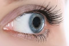 Shallow DoF eye Royalty Free Stock Photos