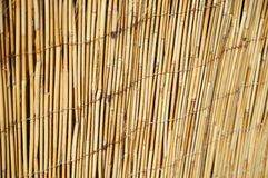 Shallow DOF image of cane fence Royalty Free Stock Photography