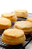 Shallow focus close up of fresh baked biscuits Royalty Free Stock Images