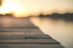 Shallow Focus of Gray Wooden Dock Stock Photo