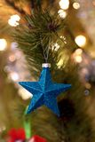 Shallow Focus Photography of Blue Star Christmas Tree Decor Royalty Free Stock Photo
