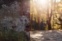 Shallow Focus Photography of Brown and Gray Bricked Wall Royalty Free Stock Photography