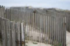 Shallow Focus Photography of Brown Wooden Fence Royalty Free Stock Image