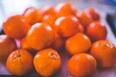 Shallow Focus Photography of Orange Fruits Stock Images