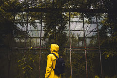 Shallow Focus Photography of Person Wearing Yellow Raincoat and Black Backpack Standing in Front Green Leaved Trees during Daytime Royalty Free Stock Photography