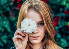 Shallow Focus Photography of Woman Holding White Flower royalty free stock images