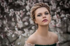 Shallow Focus Photography of Woman Near Cherry Blossom Tree Stock Photography