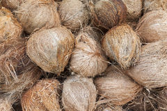 Shallow  of Focus to Coconut fruit , Vignette Wall Background Tex Royalty Free Stock Images