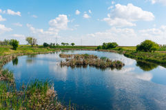 Shallow freshwater lake Royalty Free Stock Photos
