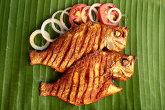 Shallow fry fish,. Shallow fry sea food with spices and herbs, served in a plate Stock Images