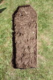 Shallow grave Stock Photos