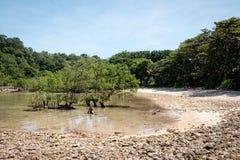 Shallow lagoon at the island of Koh Rok, Thailand Royalty Free Stock Image