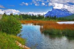 Shallow lake Royalty Free Stock Image