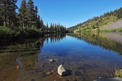 Shallow Mammoth Lake among pine forests Royalty Free Stock Photography