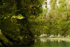 A shallow mountain river in a deep gorge, a view from the bottom of the gorge stock photos
