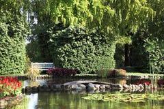 Shallow pond Royalty Free Stock Photos
