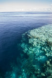 Shallow Reef and Deep Drop Off. A beautiful coral reef drops into deep water in Wakatobi National Park, Indonesia. This area, south of Sulawesi, harbors Royalty Free Stock Image