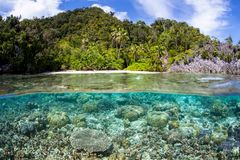 Shallow Reef and Remote Beach in Raja Ampat Royalty Free Stock Images