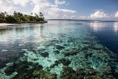 Shallow Reef and Tropical Island Royalty Free Stock Photos
