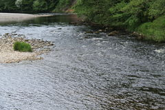 Shallow River. Stock Photography