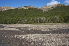 Cerro Castillo National Reserve in northern Patagonia, Chile. Shallow river running alongside the Carretera Austral as it passes through Cerro Castillo National royalty free stock photos