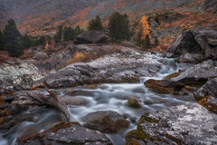 Shallow Rocky Stream Long Exposure View With Pine Trees, Altai Mountains Highland Nature Autumn Landscape Photo Stock Images