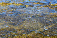Shallow Sea Water Background Stock Images