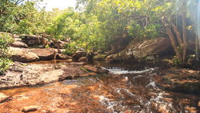Shallow Stream Flows among Stones under Shadows of Forest. Transparent foamy shallow stream flows among stones under tropical forest shadows stock video