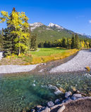 The shallow stream Royalty Free Stock Images