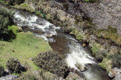 Mountain stream in the Antisana Ecological Reserve, Ecuador Stock Photography