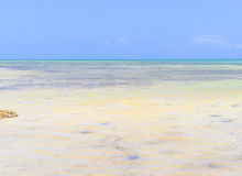 Shallow Water in the Atlantic Royalty Free Stock Images