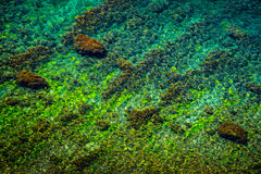 Shallow water Royalty Free Stock Photos