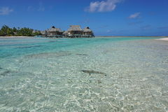 Free Shallow Water Of Lagoon Bungalows French Polynesia Royalty Free Stock Photography - 83241877