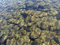 Shallow water view of Kuma river bottom in Japan stock photos
