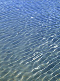 Shallow Waters Royalty Free Stock Photo