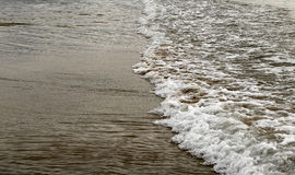 A shallow wave on sandy beach Stock Photography